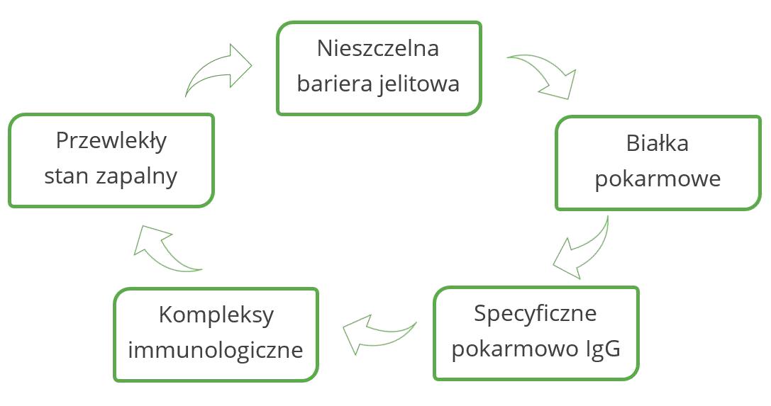 Przyczyny nadwrażliwości typu III